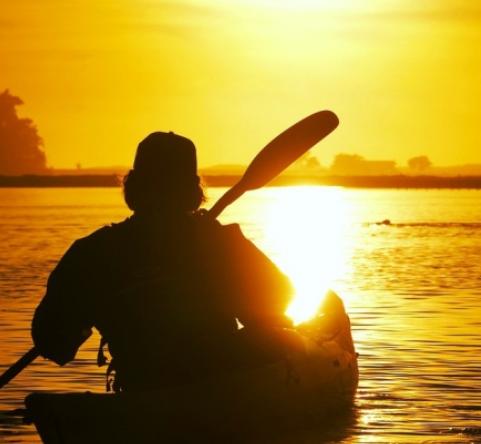 sunset kayak tour elkhorn slough